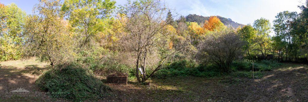 Ein fotografisches Kleinod entsteht. Unser Fotogarten im Herzen der Natur. (c) Saaleland-Photography